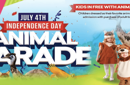 Jungle Island to Host Family-Friendly July 4th Celebration with Animal Parade, DJ, Kids Entertainment, Face Painting and More!
