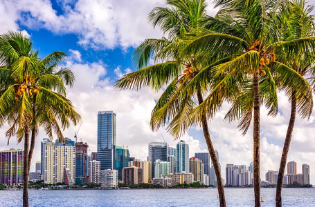 305 To My City! Where to Celebrate 305 Day in Miami