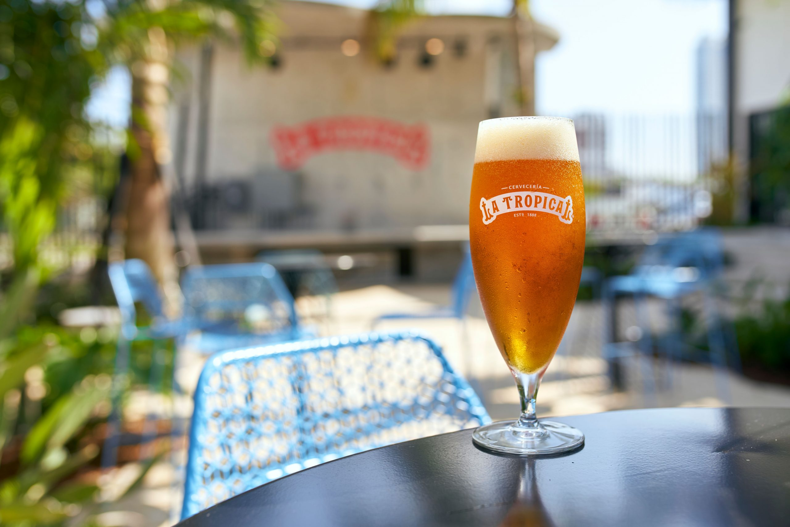 Cheers to Beer! Where to Celebrate National Beer Day